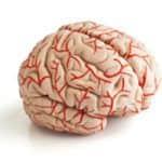 agyhártyagyulladás