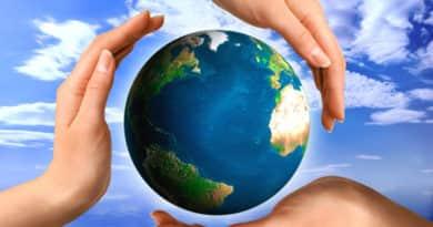 Göncöl Szövetség: már a természetet fosztogatjuk