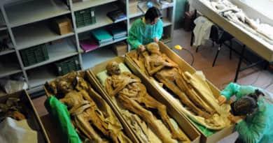 A váci múmiákat is bemutató kiállítás nyílik