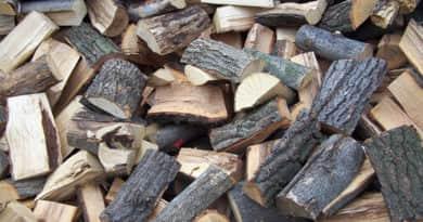 Már igényelhető a téli tűzifa a városházán, elindult a beszerzési pályázat is