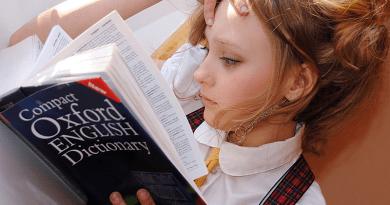 Zsebpénzt is kapnak a külföldön nyelvet tanuló diákok