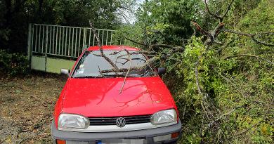Hétvégi viharkárok: kidőlt fákat fűrészeltek a tűzoltók