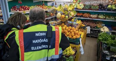 Döglött rovarok és élő egér a magyar vágóhídon