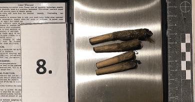 Duna-parti portyán kapták a fülest a váci nyomozók
