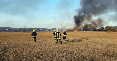 Égő nádas oltásában segítettek az önkéntes tűzoltók