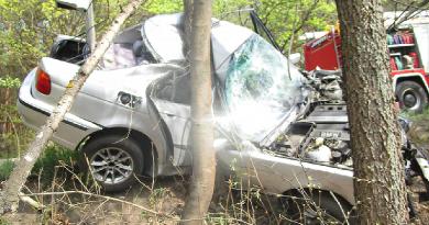 Fának hajtott egy autó, a sofőrt az arra járók kimentették