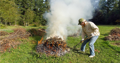 Jövő év elejétől gyakorlatilag betiltják az avar és a kerti hulladék égetését
