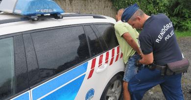 Döntött a bíróság: harminc napra előzetesbe került a ligeti támadó