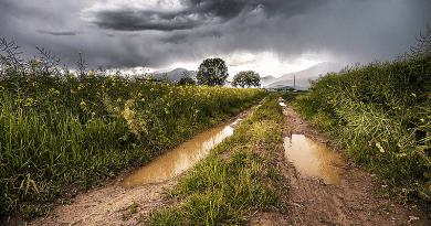 Pest megyében is heves zivatarokra, néhol kiadós esőre figyelmeztetnek