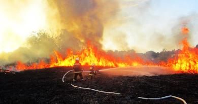 Nagy tűzben égett a nádas, a lángok a házak felé közelítettek