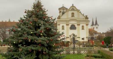 Deákvárról érkezett a város karácsonyfája a főtérre