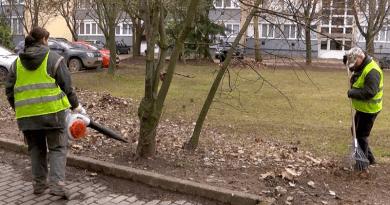 A deákvári lakótelepekről is szállítják a faleveleket