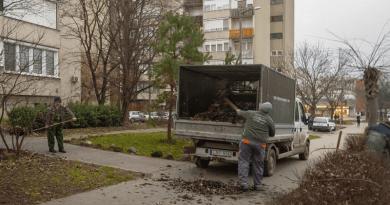 A lakótelepeken hamarosan végeznek a lombtakarítással
