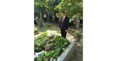 Megújult Szőnyi István síremléke Zebegényben