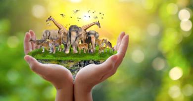 Az állatok világnapja és mi emberek