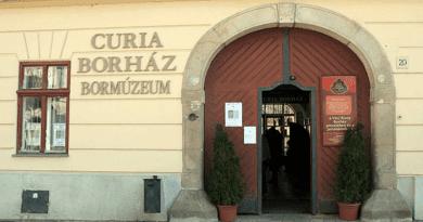 Tizenkét üveg befalazott badacsonyi bort is kap az új tulaj