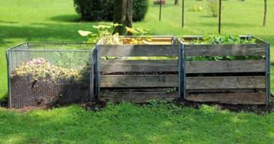 Hogyan hasznosítsuk az avart és a kerti hulladékot?