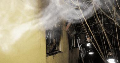 A tulaj oltotta a verőcei tüzet, de súlyosan megsérült